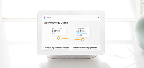Google Nest Hub Usage Screen