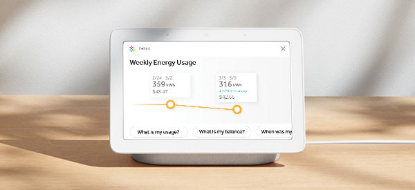 The Google Assistant   Reliant Energy