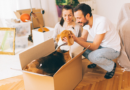 young couple with dog and moving boxes