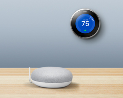 Google Nest Mini and Google Nest Learning thermostat