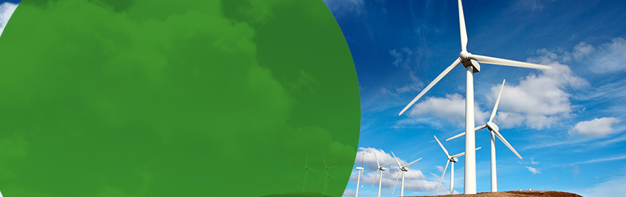 The Reliant Secure Advantage® 12 100% Wind plan